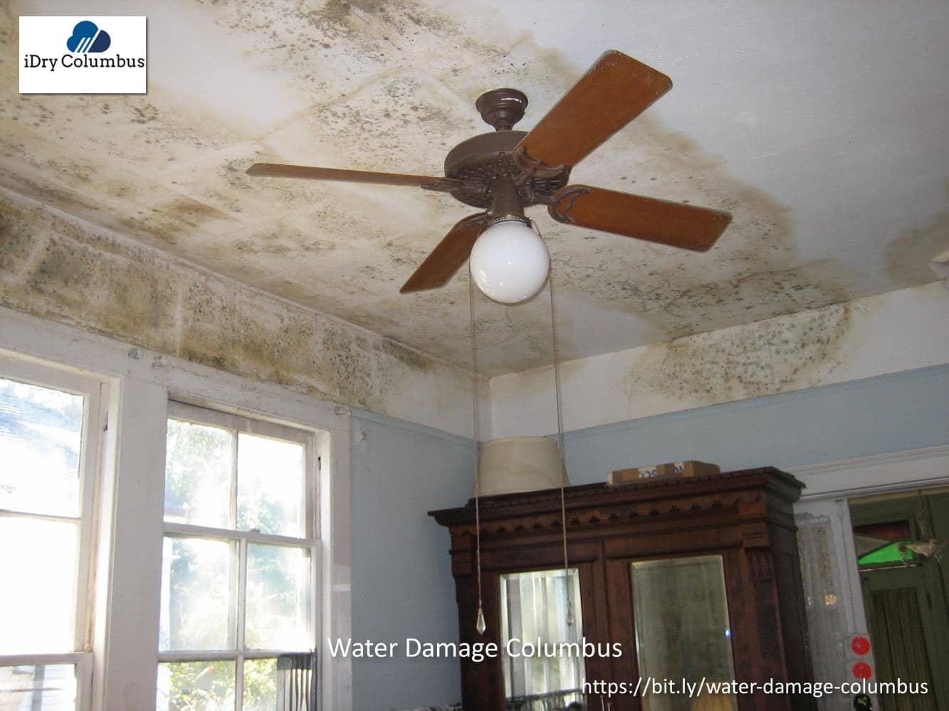 Idry Columbus Water Damage Cleanup (m1) (cid) 6